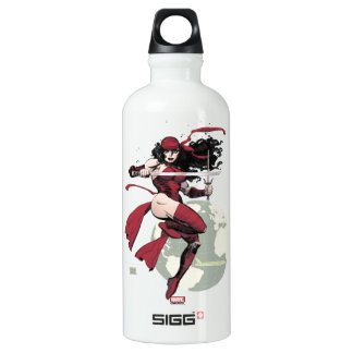 Elektra Traveling The World Water Bottle
