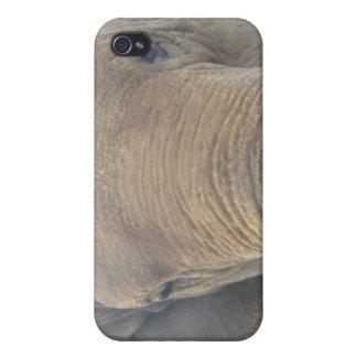 Elepant eyes iPhone 4 case
