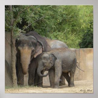 elephant4 poster