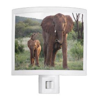 Elephant and calf Nightlight Night Lite