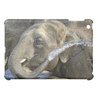 Elephant Asian Calf Water Squirt Hard Shell C Cover For The iPad Mini