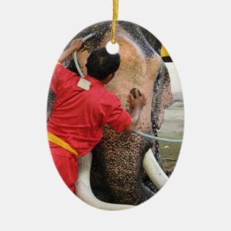 Elephant Bathtime ... Ayutthaya, Thailand Ornaments