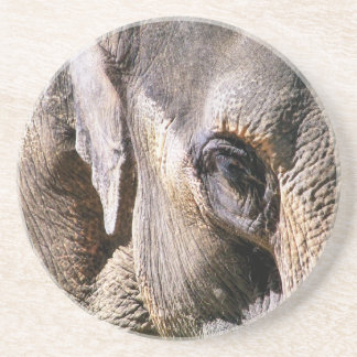 ELEPHANT COASTER
