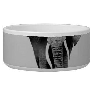 Elephant - double exposure art