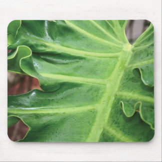 Elephant Ear Leaf Mouse Pad
