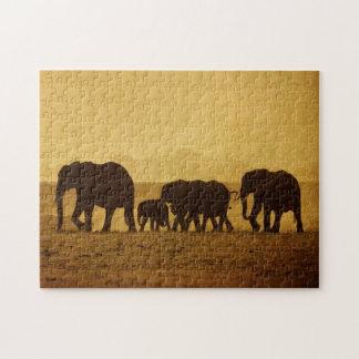 Elephant Family Jigsaw Puzzle
