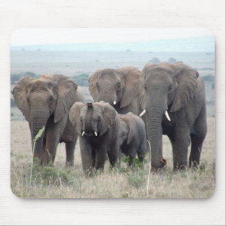 elephant herd mouse pad