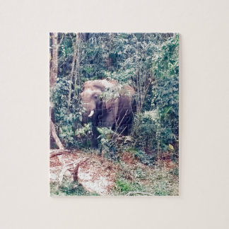 Elephant in Thailand Jigsaw Puzzle