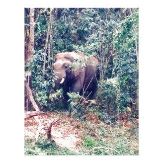 Elephant in Thailand Letterhead