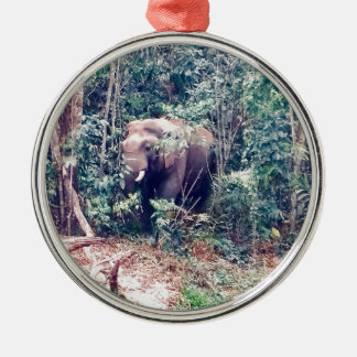Elephant in Thailand Metal Ornament
