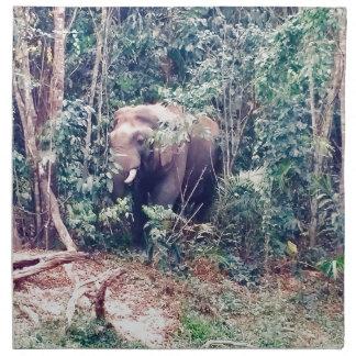 Elephant in Thailand Napkin