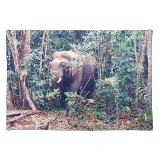 Elephant in Thailand Placemat