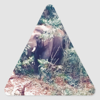 Elephant in Thailand Triangle Sticker