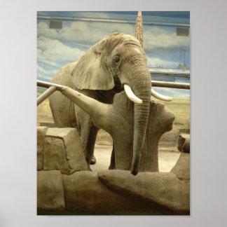 Elephant Love Posters