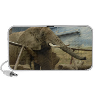Elephant Love iPhone Speakers