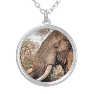 Elephant Lovers Silver Plated Necklace