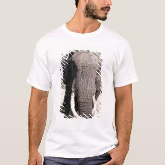 Elephant (Loxodonta africana), Abu Camp 3 T-Shirt