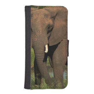 Elephant (Loxodonta Africana), Hwange National iPhone SE/5/5s Wallet Case