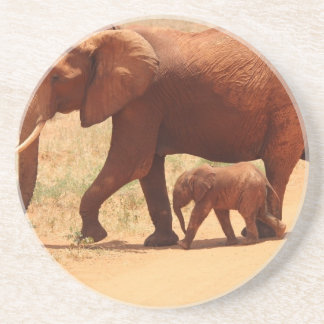 Elephant Mummy and Cub Coaster