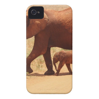 Elephant Mummy and Cub iPhone 4 Covers