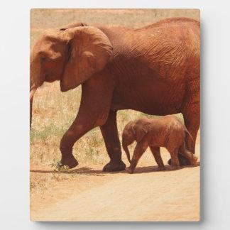 Elephant Mummy and Cub Plaque