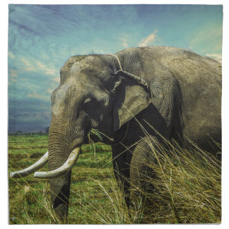 Elephant Nature Napkin