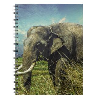 Elephant Nature Notebook