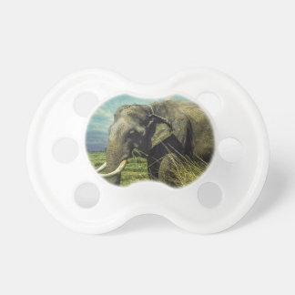 Elephant Nature Pacifier