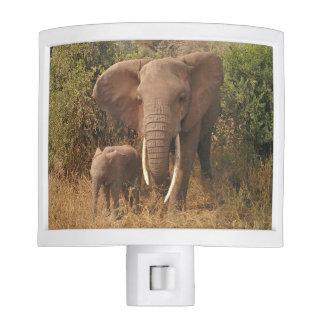 Elephant Nite Lites