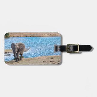 Elephant on the lake luggage tag