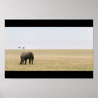 Elephant on the Mara Poster