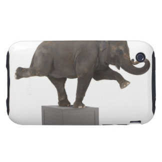 Elephant performing trick on box tough iPhone 3 cover