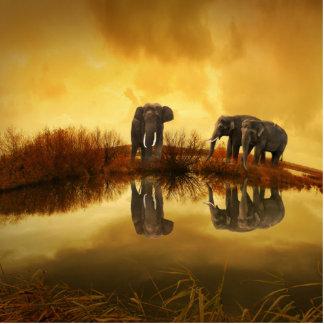 Elephant Photo Cut Outs