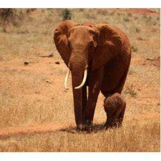 Elephant Photo Cutouts