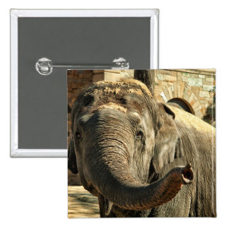 Elephant Pointing Forward with the Trunk 2 Inch Square Button