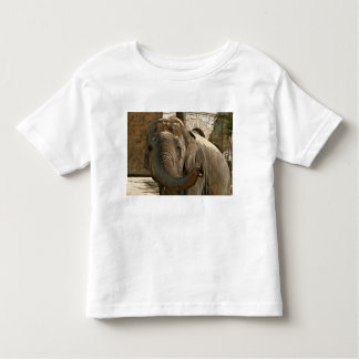 Elephant Pointing Forward with the Trunk Toddler T-shirt