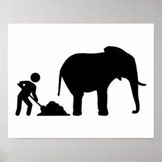 Elephant poo poster