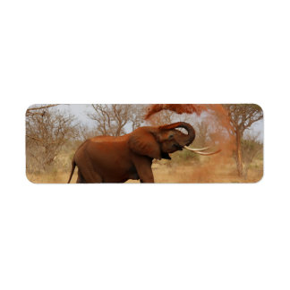 Elephant Return Address Label