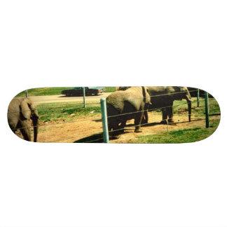 Elephant Road Skate Board Deck