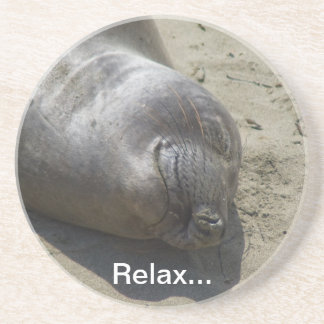 Elephant Seal Coaster