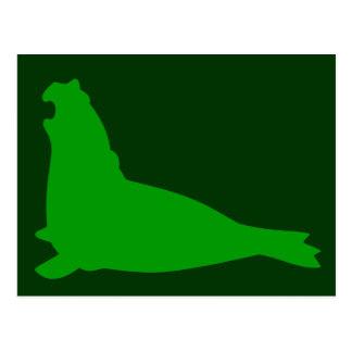 Elephant Seal Postcard Green