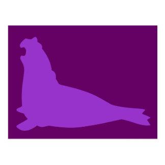 Elephant Seal Postcard Purple