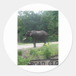 Elephant Standing Regally Round Sticker