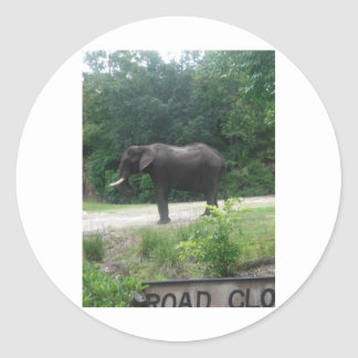Elephant Standing Regally Stickers