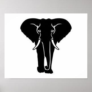 Elephant tusk print