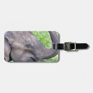 Elephant, Udawalawe, Sri Lanka Luggage Tag