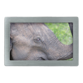 Elephant, Udawalawe, Sri Lanka Rectangular Belt Buckle