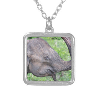 Elephant, Udawalawe, Sri Lanka Silver Plated Necklace