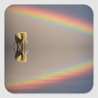 Elephant, water, and rainbow, Kenya Square Sticker