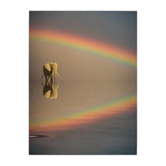 Elephant, water, and rainbow, Kenya Wood Prints